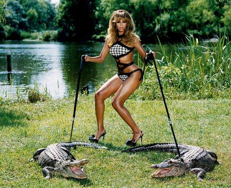 beyonce and crocodiles