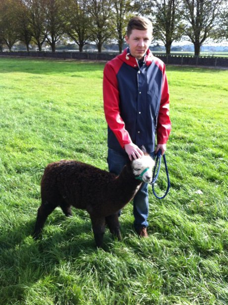 Professor Green gets acquainted with a goat