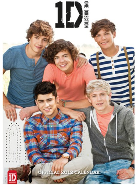 One Direction '2012 Calendar'