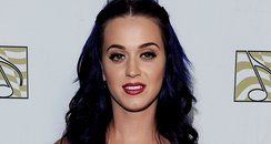 Katy Perry on the red carpet