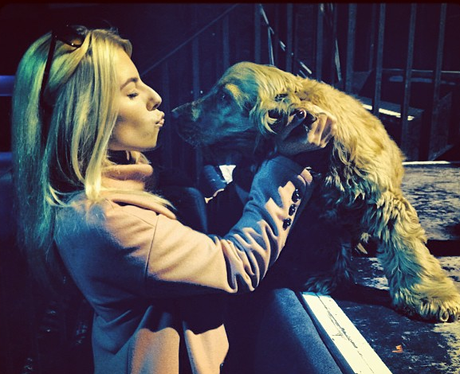 Mollie king kissing a dog