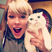 Image 10: Taylor Swift Cat