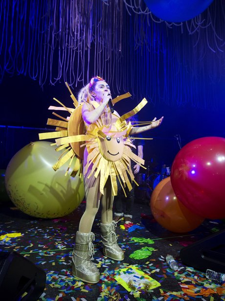 Miley Cyrus 'Miley Cyrus and Her Dead Petz'