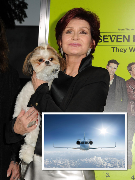 Sharon Osbourne's Private Jet For Dog
